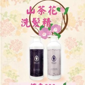 山茶花01-01